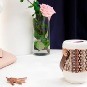 Un diffuseur de parfum d'intérieur qui change vraiment la vie