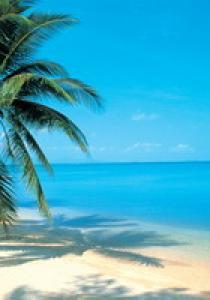 Qui veut partir en vacances avec nous ?