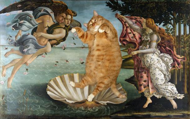 ZARATHUSTRA le gros chat roux qui s'incruste dans les TABLEAUX de grands maîtres