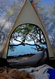 Le SEXE au naturel – le camping