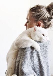 10 CHOSES qui prouvent que votre CHAT se FOUT de VOUS #Enfoiré
