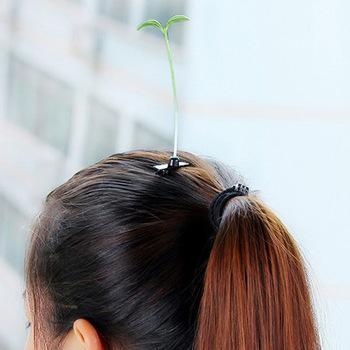 NOUVEAU IT CAPILLAIRE : des plantes en CHEVEUX !