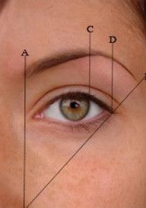 LA technique pour connaître la FORME de l'épilation de ses sourcils